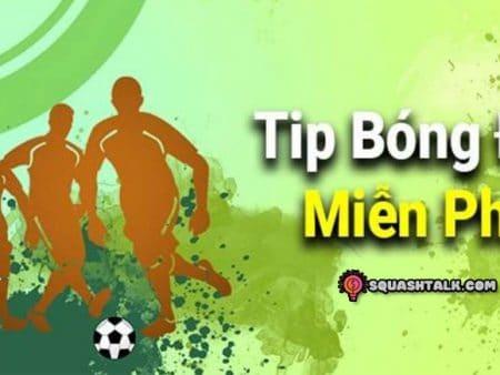 Tips bóng đá là gì? Cung cấp nơi chia sẻ tips bóng đá hàng đầu